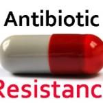 Antibiotico